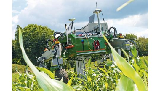 """The first agrirobot-prototypes are already being tested: """"Bonirob"""" can navigate a maize field and scan plants...."""
