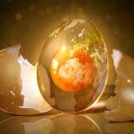 Яйцето – историята, която ще промени начина, по който възприемаш другите хора