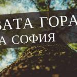 засаждане на нова гора