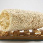 Как да си отгледаме Луфа – органична, ексфолираща гъбичка за баня и кухня