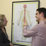 Image shows Eastbourne Chiropractor Mykel Mason looking at a nerve chart to accompany the blog he has written about interesting facts about the nerves.