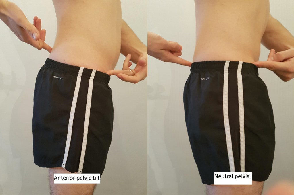 The picture demonstrates a man with his hands on the bony prominence at the front of his pelvis and the bony prominence at the back. The first is where the front is lower than the back (anterior pelvic tilt) and the second where they are in line (neutral).