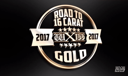 wXw Road to 16 Carat Gold – Munich (February 18, 2017)
