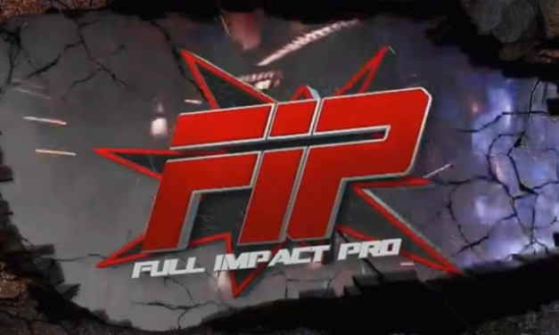 FIP – Establish Dominance 2017 (April 2, 2017)