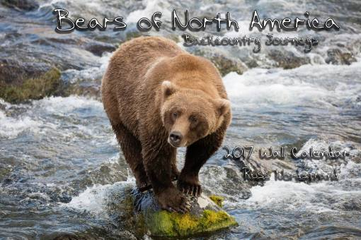 2017 Calendar: Bears of North America