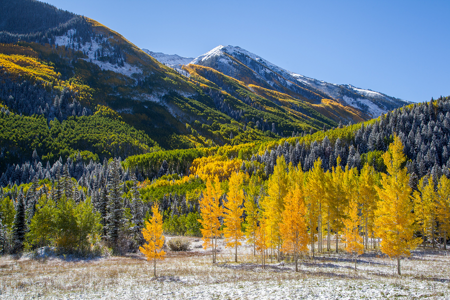 Autumn in Colorado: Rocky Mountain NP