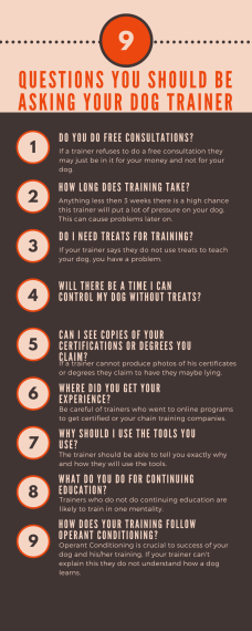 9 questions clients should ask their dog trainers