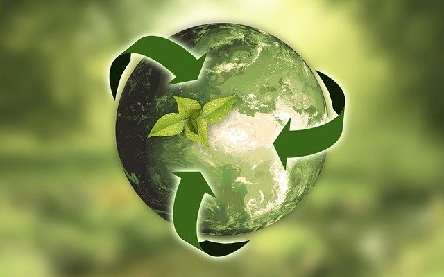 Nature Earth Sustainability by annacapicture Pixabay