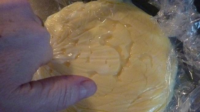 Puddingschnecken (13)