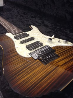 DROP TOP CLASSIC TIGER EYE BURST_02