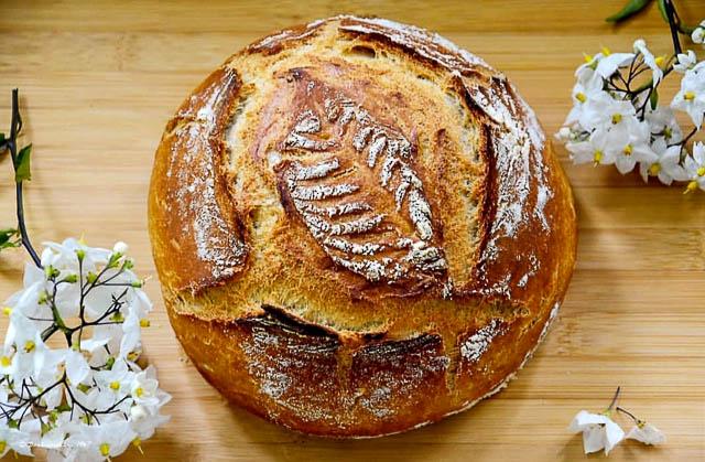 Brot friss dich dumm