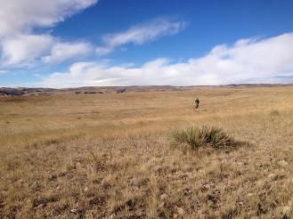BPR Roaming / CO: high plains drifter
