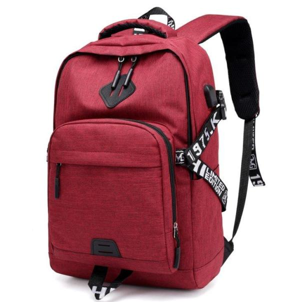 Laptop Backpack USB Charge for Teenagers Backpack Gules