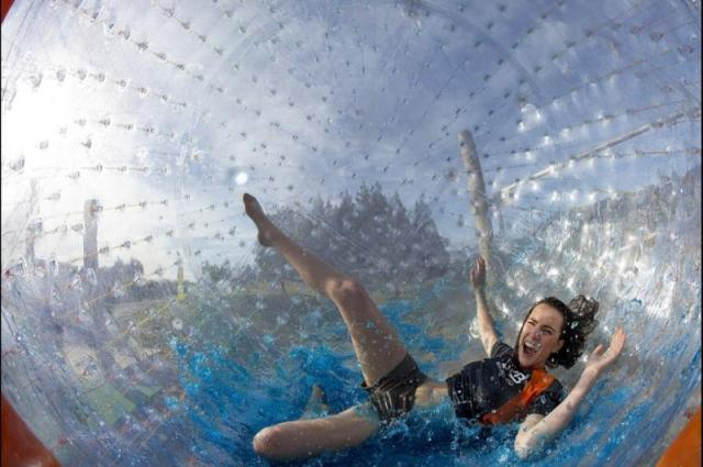 Zorbing - 5 must book tours New Zealand - North island