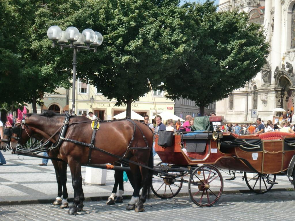 中世の趣深い街並に馬車が映える