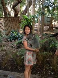Holding a Koala: Check