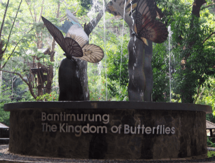 Bantimurung(蝶の王国) (出典:著者撮影)