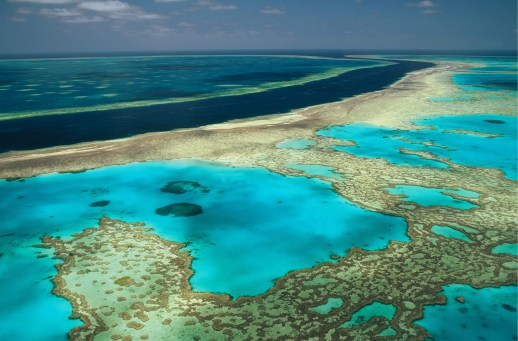 The Great Barrier Reef, near Cairns