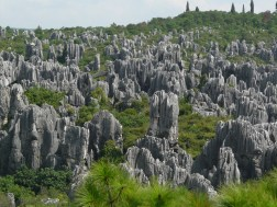 Tsingy Stone Forest