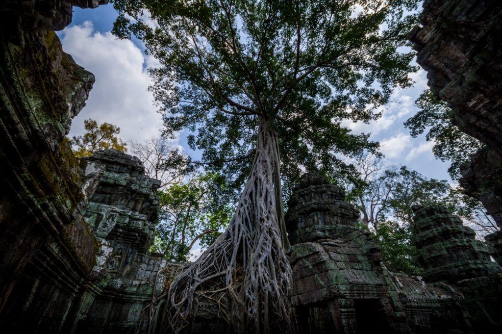 Angkor Wat Titelbild