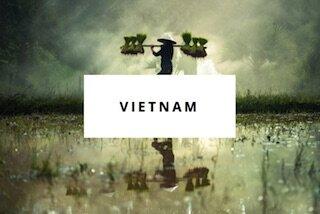 vietnam dest