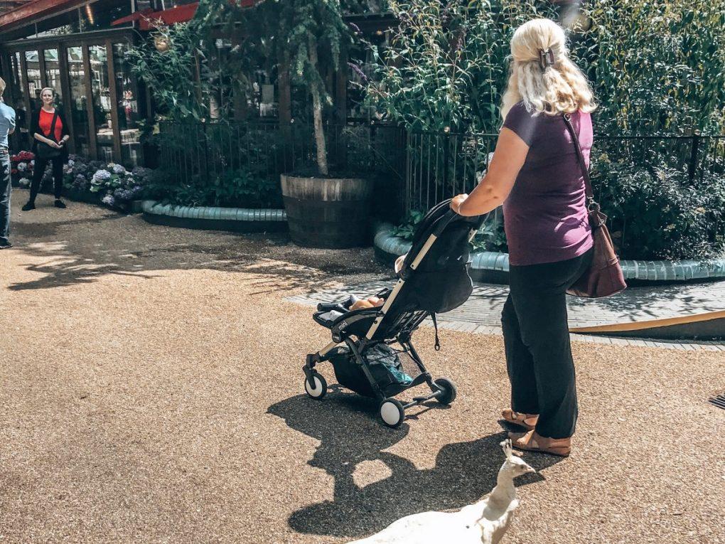 copenhagen with a baby