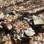 Nipmuck Trail Campsite Second fire ring