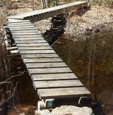 Nipmuck Trail Campsite stream
