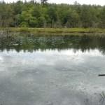 Breakneck Pond View Trail