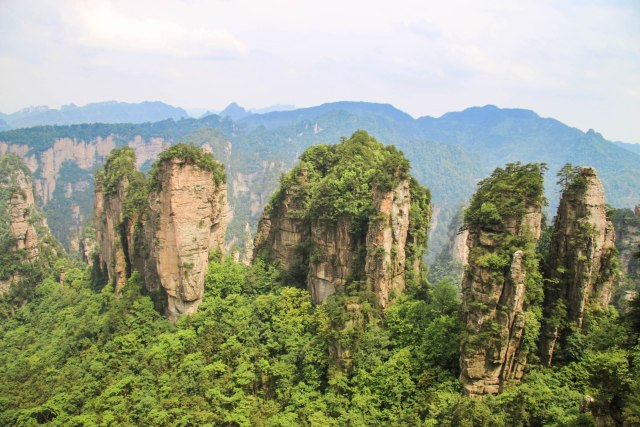 Five Fingers Peak, Huangshi Village, Zhangjiajie National Forest Park, China