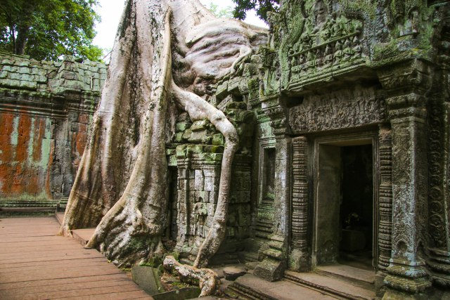 Best Temples in Angkor: Ta Prohm