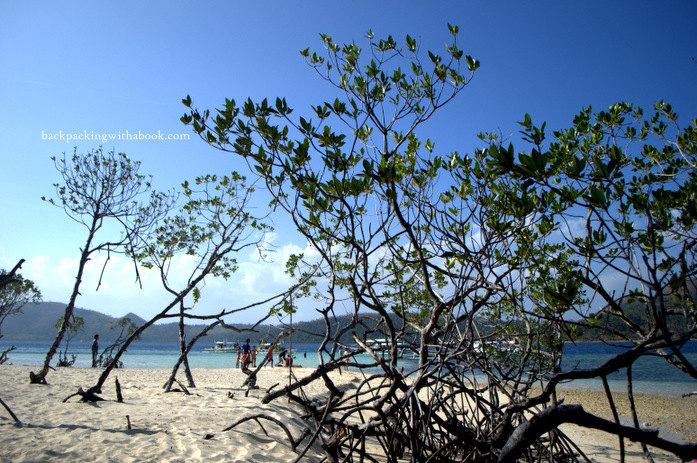 Coron Palawan Photos