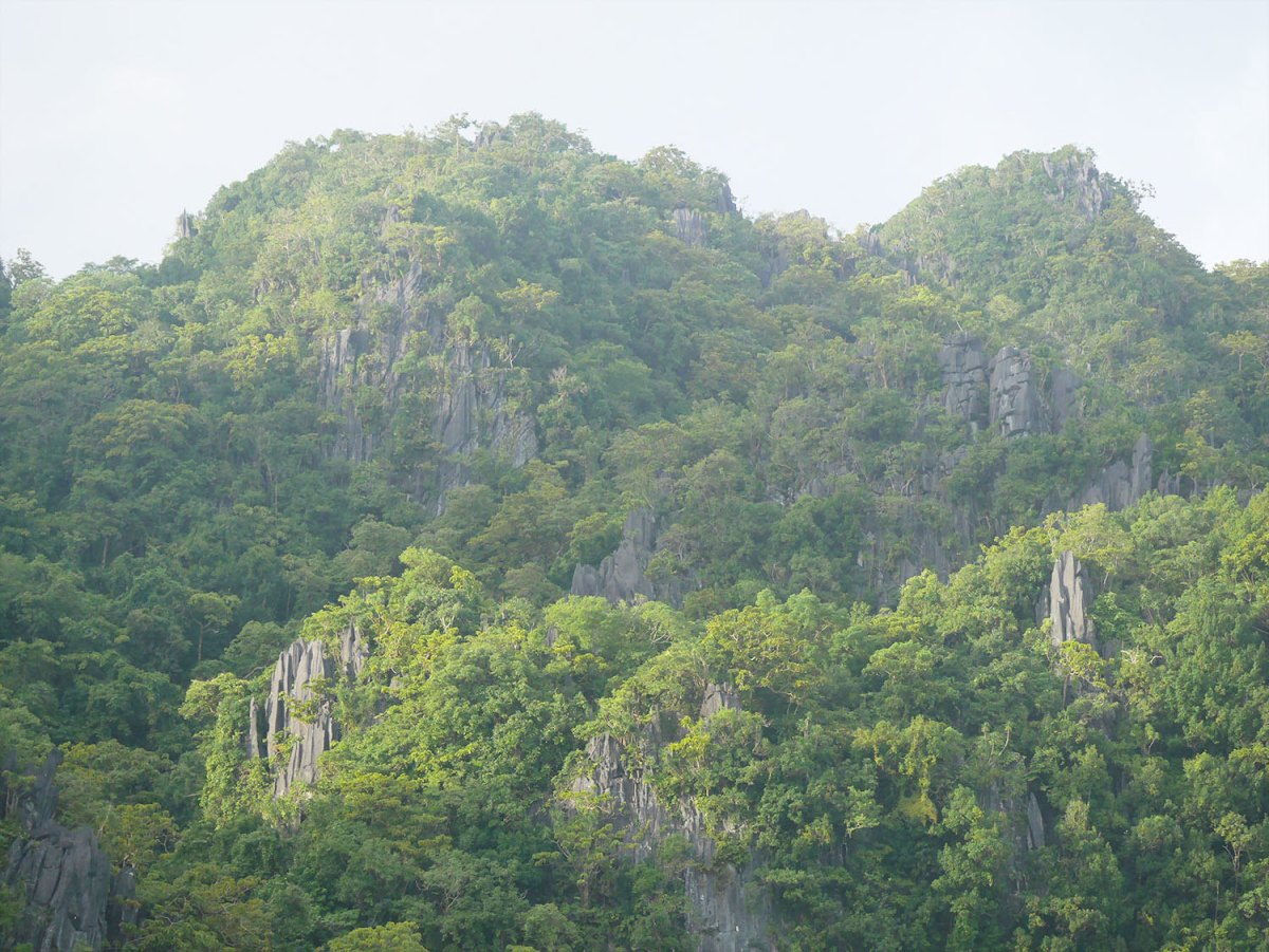 The morning light on the limestone formation across from Bukal Island, where the ceremony took place.