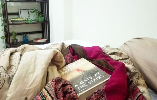 Lorrie Moore A Gate at the Stairs Review 1