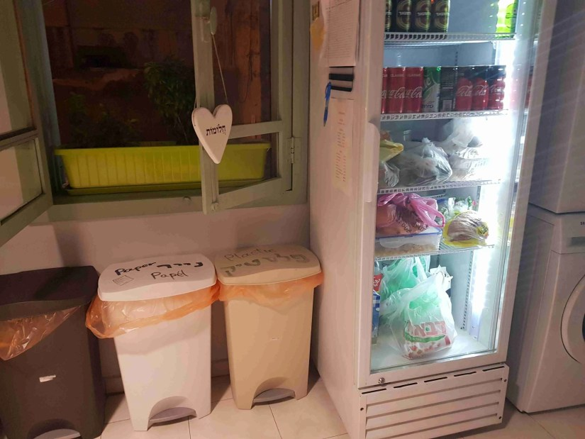 The refrigerator and the recycling bins