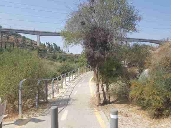 Train Bridge near Jerusalem