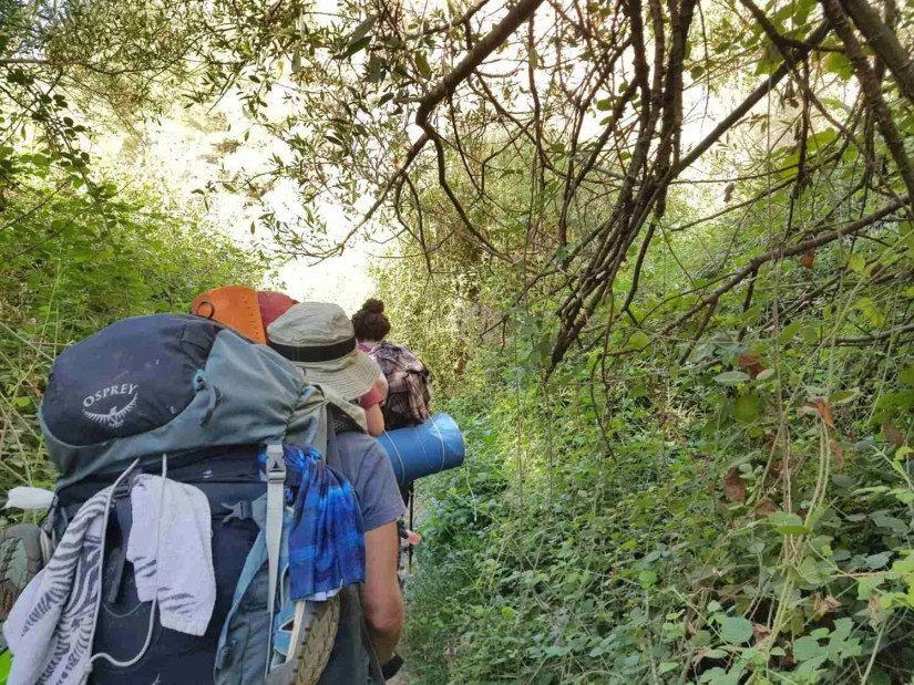 On the Israel National Trail, hiking through the forest
