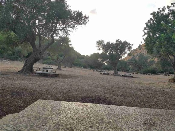 Pitchat Nahal Oren Campground on the Israel National Trail