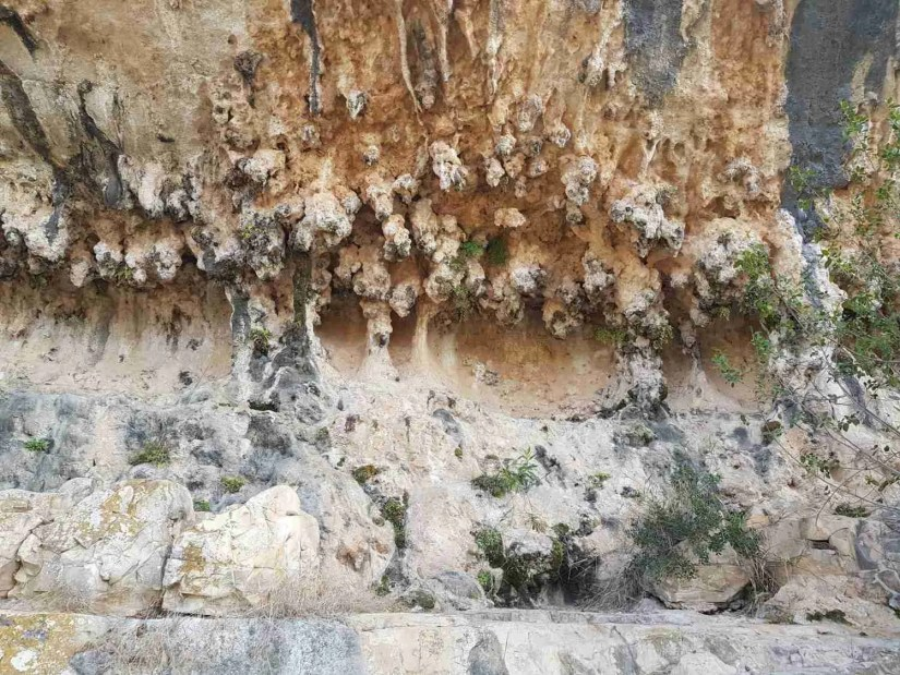 A beautiful wall of natural stone on the Carmel