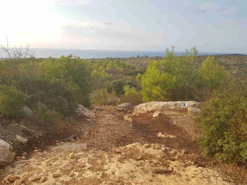 Hiking down Mount Carmel, with the Mediterranean Sea in the background