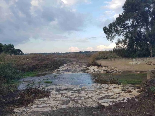 Ada Stream on the Israel National Trail