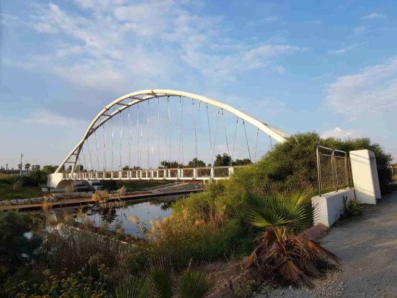 The harp bridge at Nahal Hadera Park on the Israel National Trail