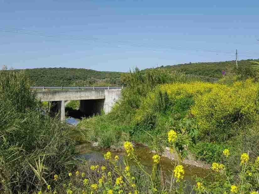 Bridge over Nahal Taninim