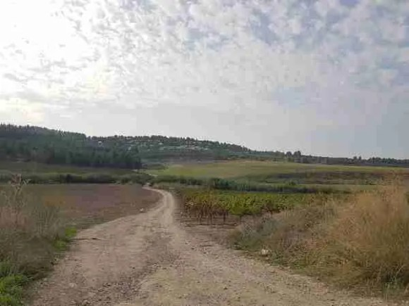 On the Israel National Trail to Neve Shalom