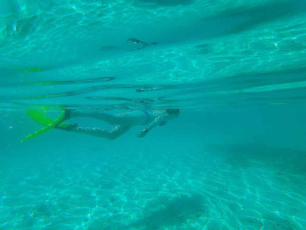 Guide to Key West: snorkel in the Dry Tortugas National Park