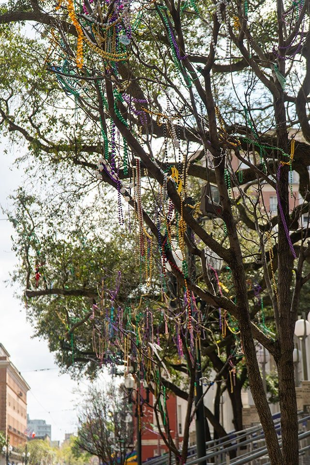 Guide to New Orleans: Tree Covered in Beads