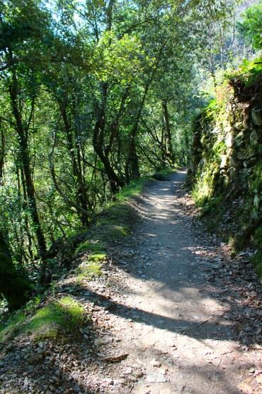 Path Manarola to Corniglia, Cinque Terre, BackpacktoBeyond