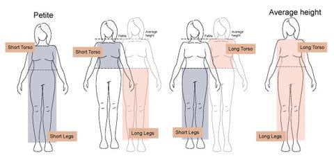 What is Petite Height?