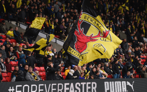 Quiet faith and kind patience  - the deserved success of Watford