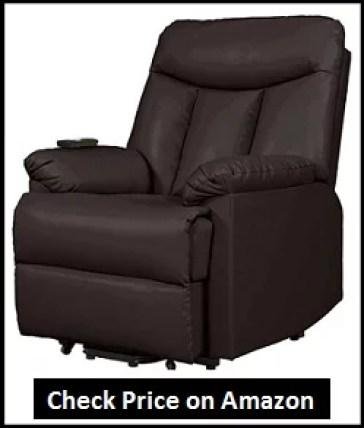 Domesis Renu Lift Chair Review